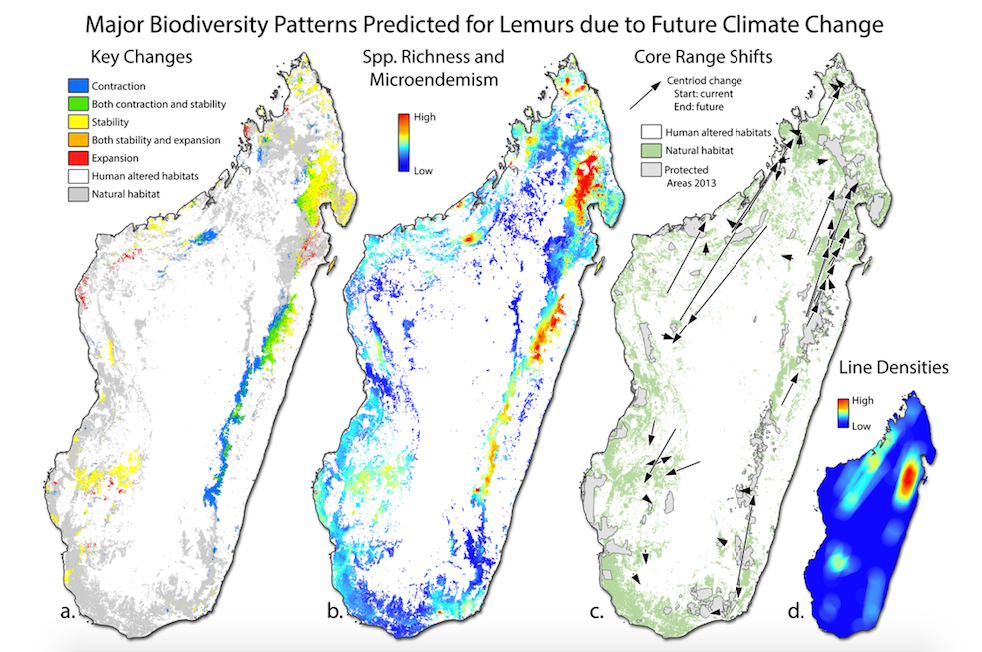 Effect of climate change on lemur distributions