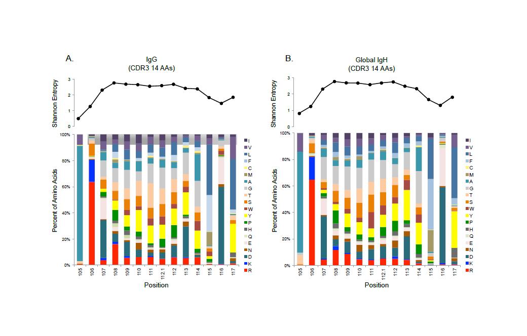 Amino acid frequencies in Propithecus coquereli immunoglobulins
